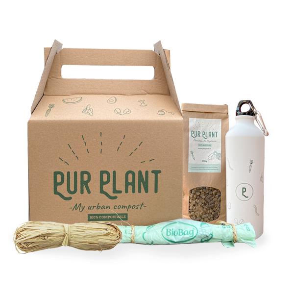 box-pur-plant