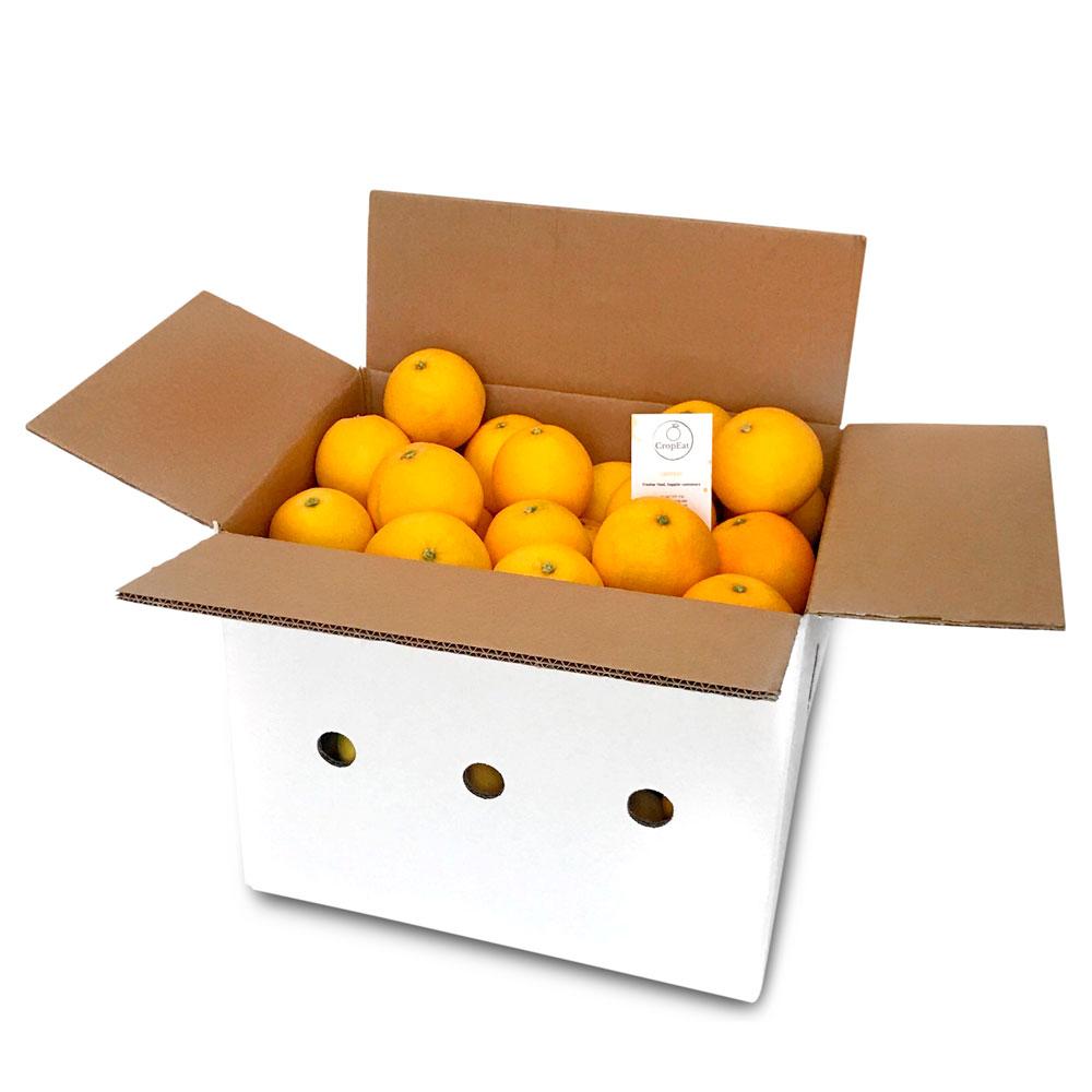 Naranjas de mesa - Caja de 10 kg