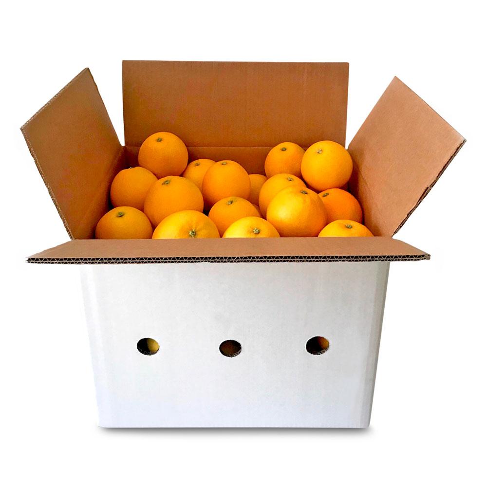 Naranjas para zumo - Caja de 10 kg