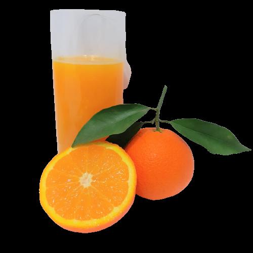 Naranja para Zumos Especiales