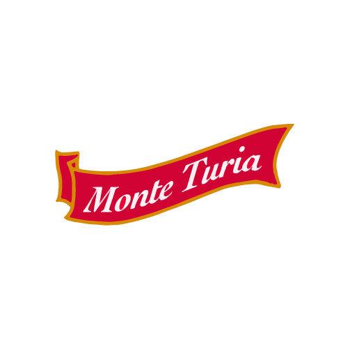 Mount Turia