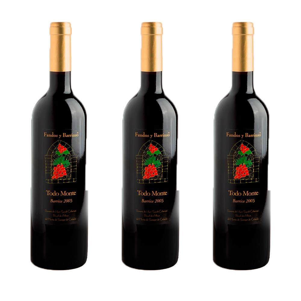 Todomonte Barrica Gran Reserva 2005 - Pack 3 botellas