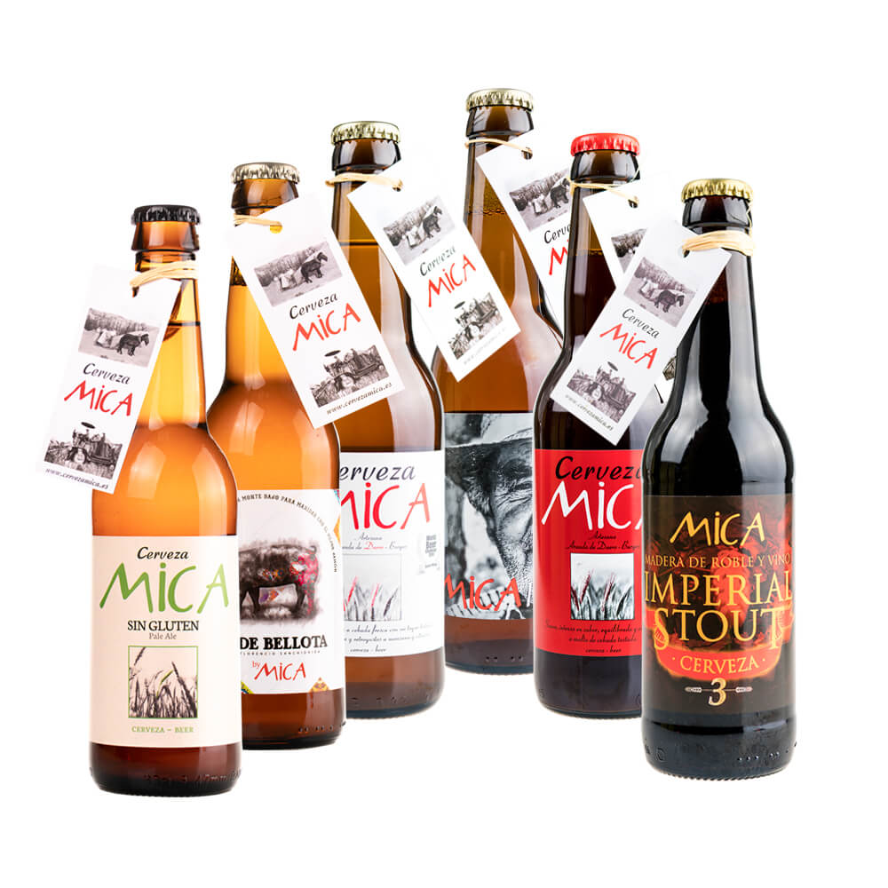 Pack Mixta Degustación - 6x33 cl