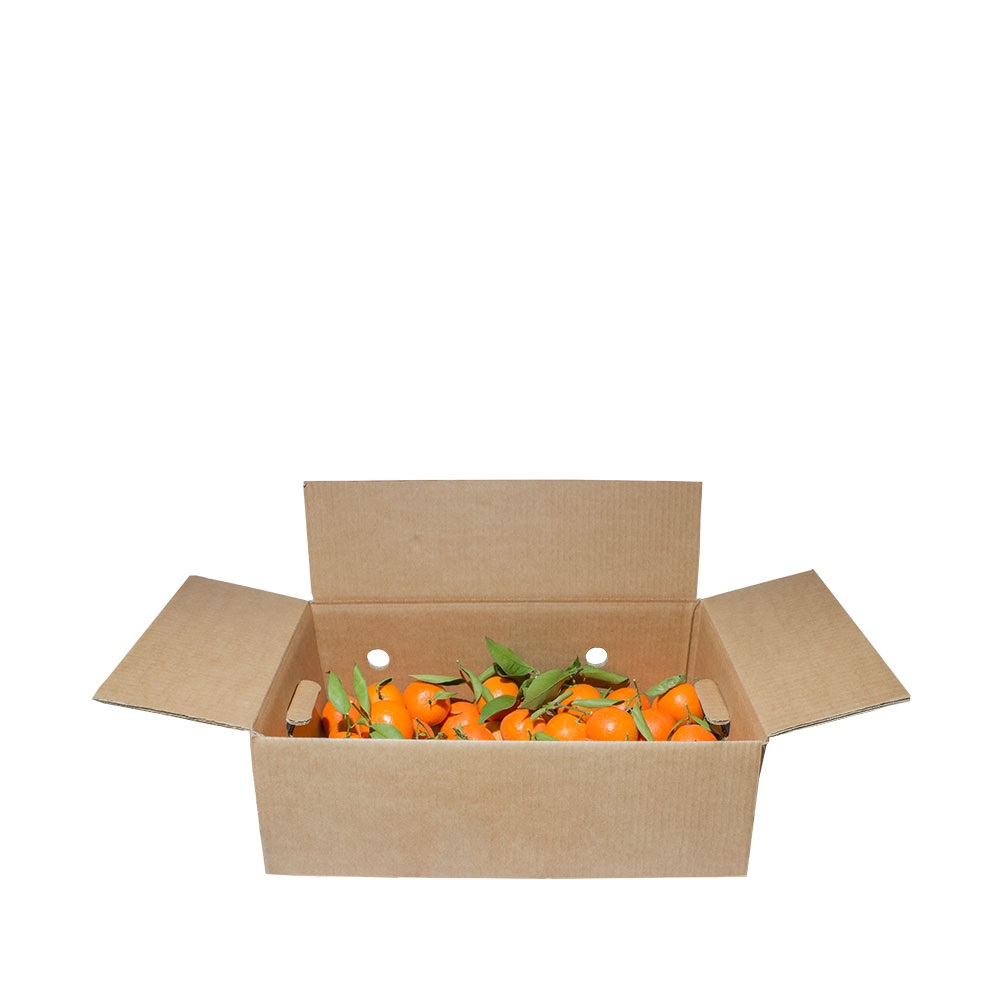 Mandarina Clemenvilla