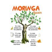Sobre Moringa Hojas 100% Eco
